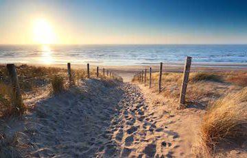 cid41168_fullimage_zeeland-strand