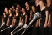 zangweek verstandelijke beperking